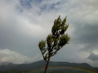 「虹」に向かって!
